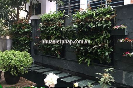 Vườn hoa tường đứng cho căn hộ của bạn