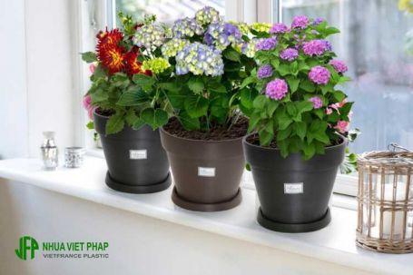 Chậu hoa gỗ nhựa – Nhựa Việt Pháp
