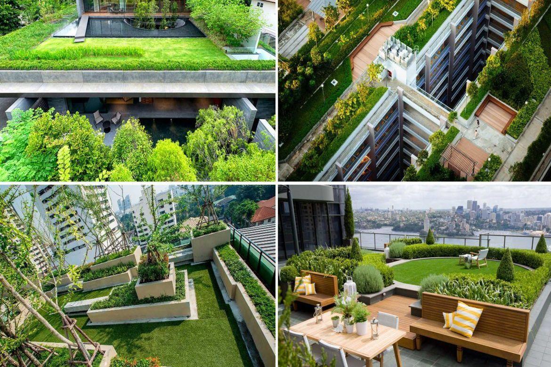 Vườn trên mái – Giải pháp không gian xanh cho cuộc sống hiện đại